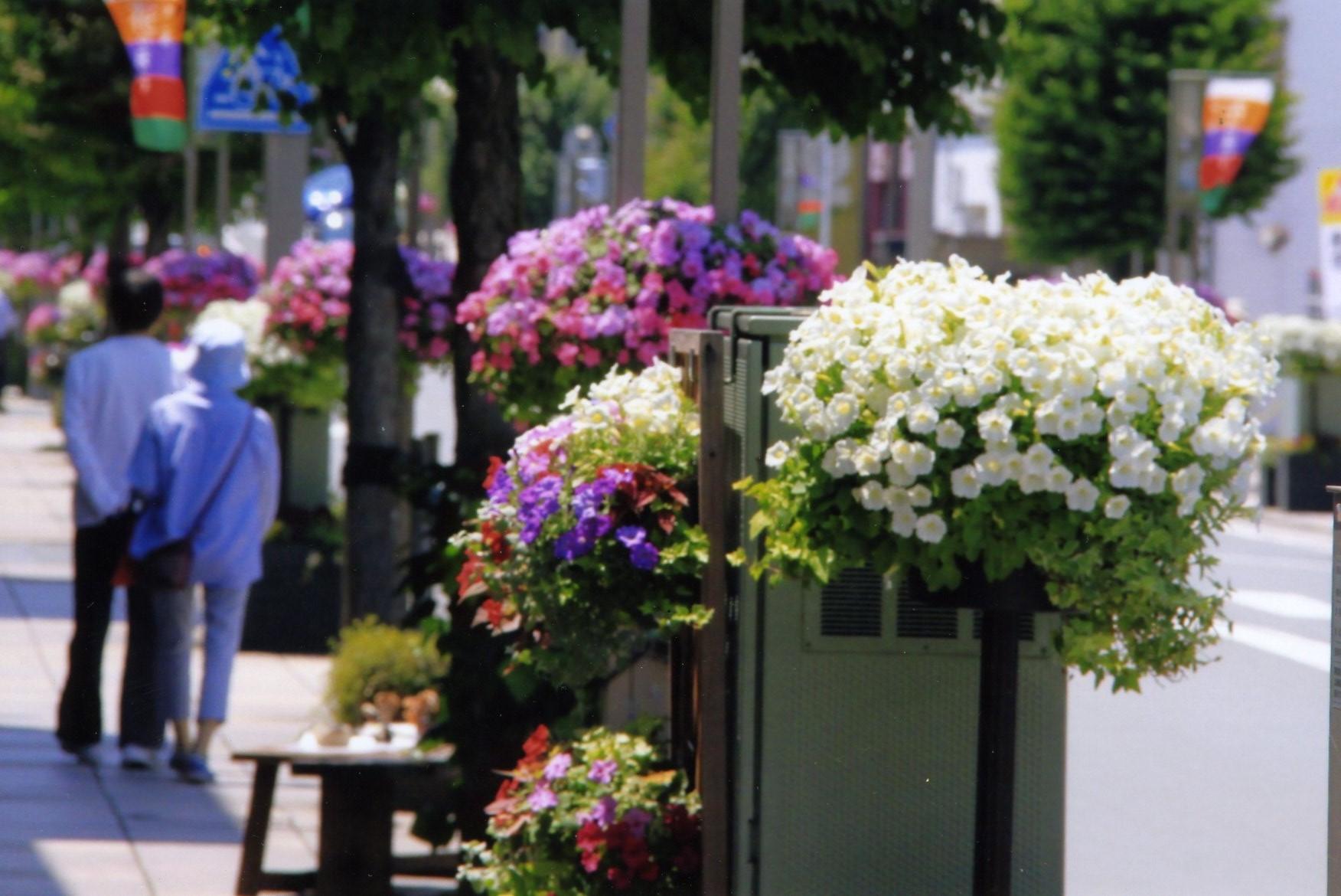 特集・大通り花飾り